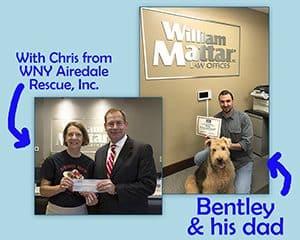 Rescue a Shelter Animal   Community   William Mattar