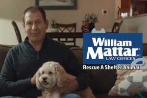 Car accident lawyer William Mattar holding his dog, Peanut Butter