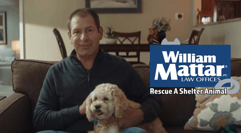 william mattar rescue a shelter animal 2020